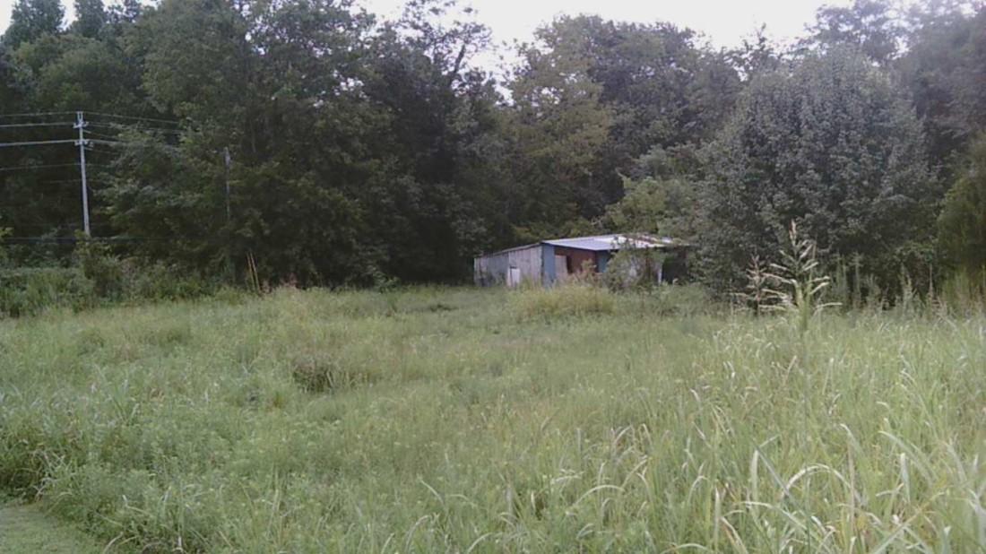 First field 3